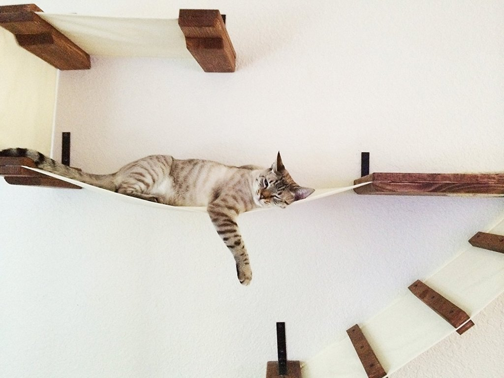 Handcrafted Wall Mounted Cat Tree Shelves